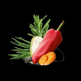 Paprika, Rosmarin, Zwiebelscheiben, Karottenscheiben, Pfeffer und Schnittlauch