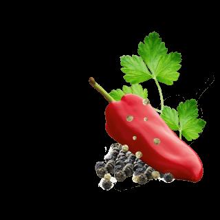 schwarzer und grüner Pfeffer mit Paprika und Petersilie