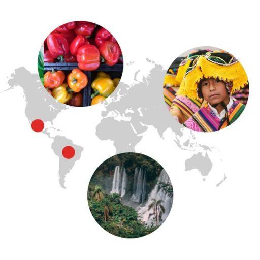 Ursprungsgebiet von Paprika auf der Weltkarte: Mexico