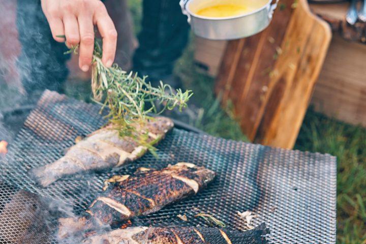 Fisch am Grill mit Rosmarin gewürzt