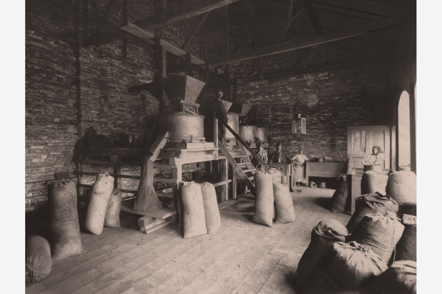 Black-and-white photograph: Bags of Kotányi ground paprika in 1881