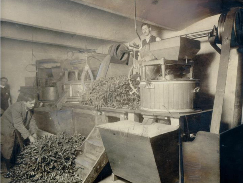 Black-and-white photograph: A Kotányi paprika mill from 1881